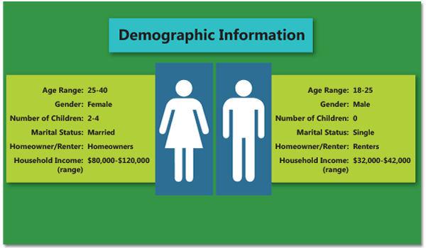 demographics for adwords